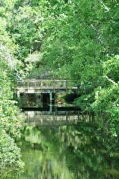 Patricia Twardzik - Bridge Over Peaceful Waters