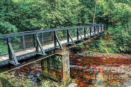 Marc Daly - Bridge over river
