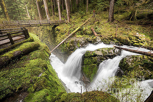 Bridge Over Sol Duc Falls in Olympic National Park Washington by Brandon Alms