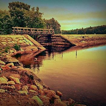 Bridge Over Water by Amanda Richter