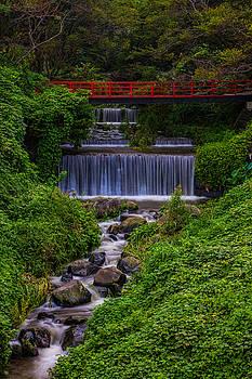 Leonard Sharp - Bridge over waterfall