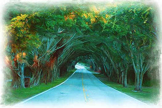 Bridge Road by Richard Nickson