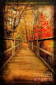 Bridge to Fall by Darren Fisher