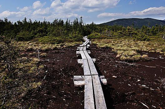 Bridge to Mizpah by Rockybranch Dreams