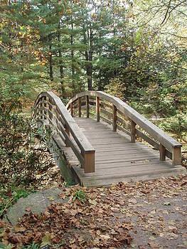 Allen Nice-Webb - Bridge To New Discoveries