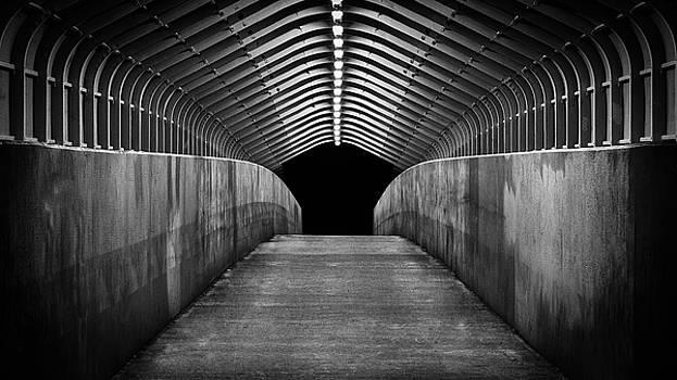 Bridge to Nowhere by Mark Spomer
