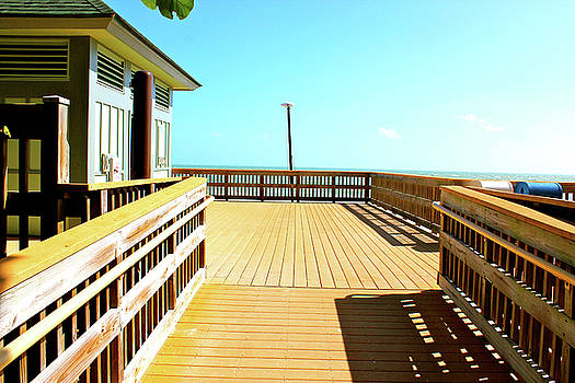 Bridge To Paradise by Gary Dunkel