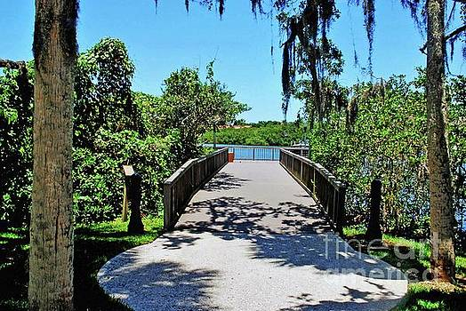 Bridge to Phillippi Creek by Gary Wonning