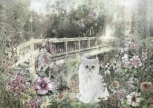 Bridge to Purrfection by Cynthia Leaphart