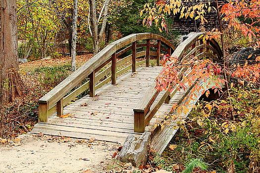 Allen Nice-Webb - Bridge Transitions