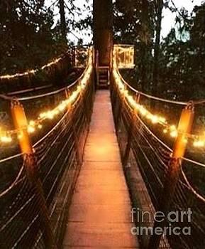 Bridges by Alejandra Flores