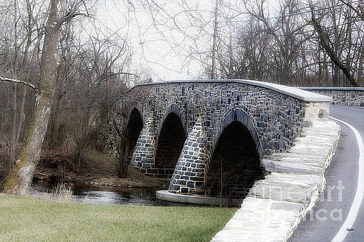 Bridging the Country  by Steven Digman