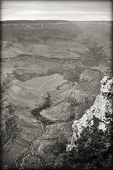 Ricky Barnard - Bright Angel Trail Black and White