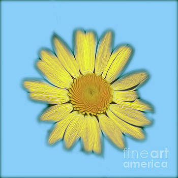 Bright Daisy by Candydash Images