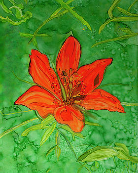 Bright Eyed Lily by Judy Huck