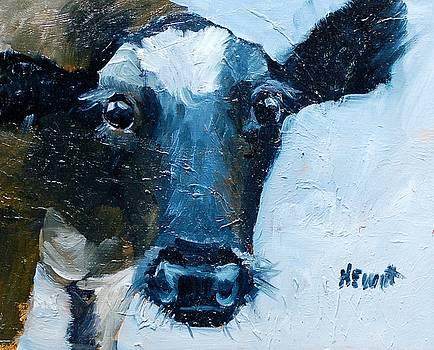 Bright Eyes by Philip Hewitt