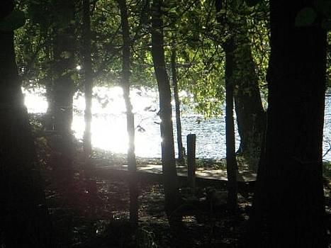 Bright Fox River Sunset by Deborah Finley