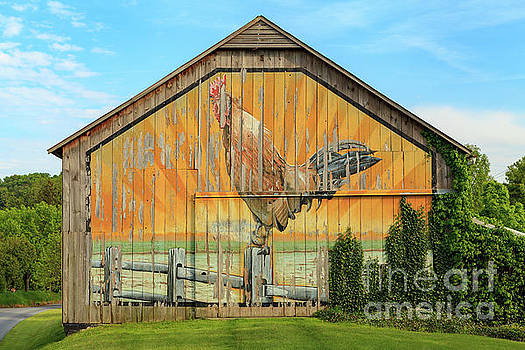 Bright Rooster Barn by George Sheldon