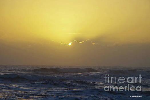 Bright sunrise by Tannis Baldwin