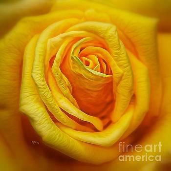 Patrick Witz - Bright Yellow Rose
