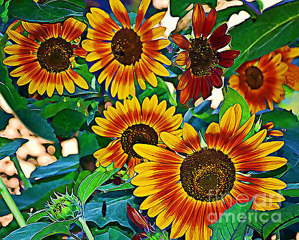 Brighten Your Day The Sunflower Way by Kathy M Krause