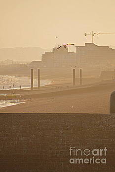 Brighton by Andy Thompson