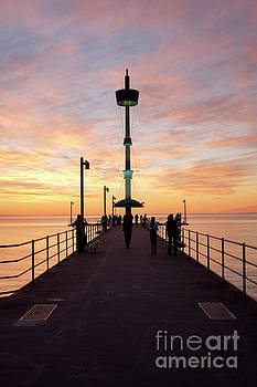 Brighton Jetty Sunset by Ray Warren