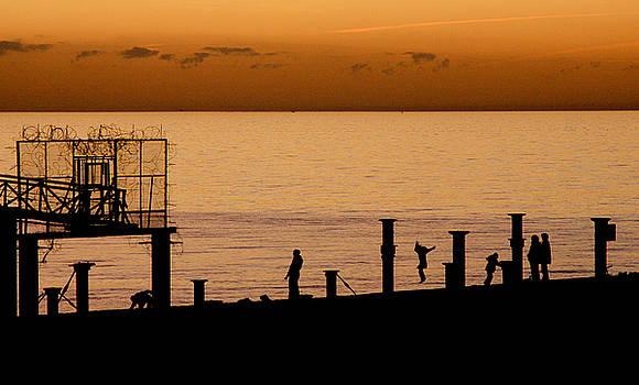 Brighton Silhouette by Darren Kearney
