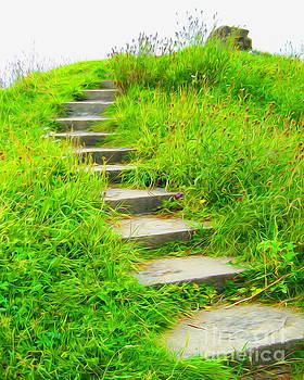 Brigit's Stairs by Joseph Re