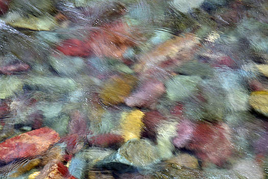 Brilliant River Rocks in Two Medicine River in Glacier National Park by Bruce Gourley