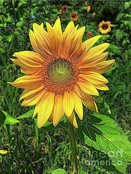 Brilliant Sunflower with Green Background by Eleanor Abramson