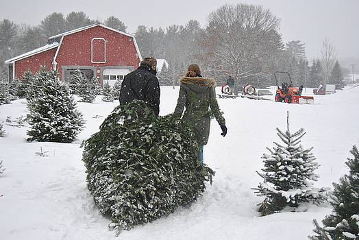 Bringing home the Christmas tree by Pamela Keene