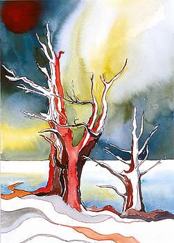 Bristlecone Pine 1 by Collin Murphy