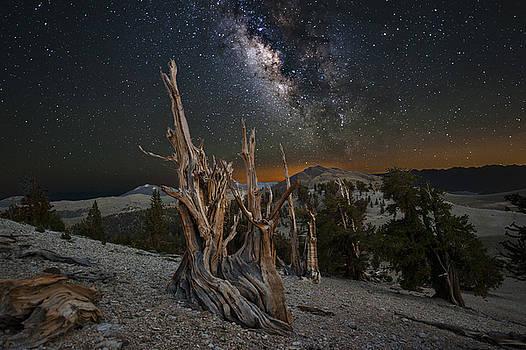 Bristlecone#2 Milky Way by Keith Marsh