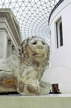 BritMuseumLion 0064 by Charles  Ridgway