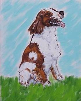 Brittany Spaniel by Kathy Young