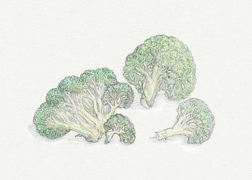 Broccoli by Tara Poole
