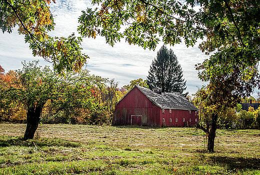 Broken Barn by Lee Fortier