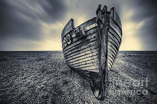 Svetlana Sewell - Broken Boat