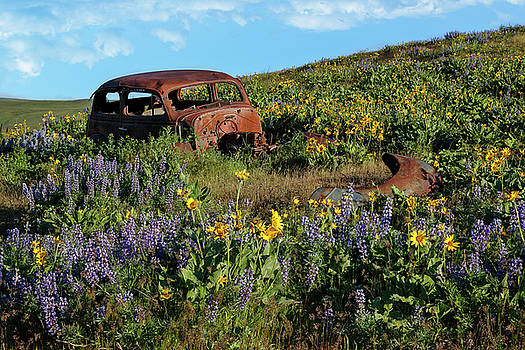 Broken Down In A Field Of Wildflowers by Wes and Dotty Weber