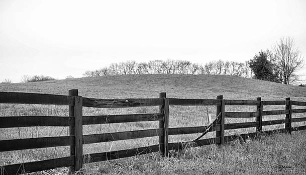 Broken Fence Black and White 1110 by Ericamaxine Price