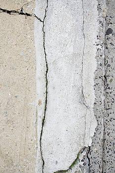 Bernice Williams - Broken Pavement