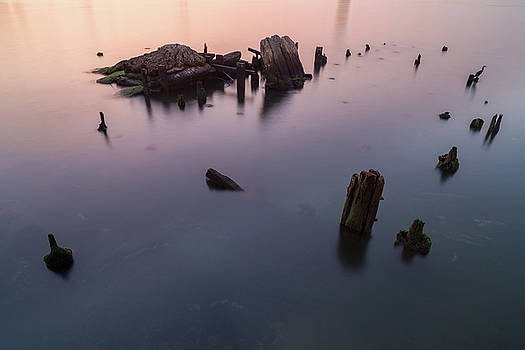 Broken pier view during sunrise with a bird by Andriy Stefanyshyn