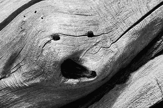 Donna Blackhall - Broken Smiles
