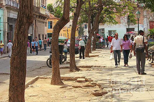 Patricia Hofmeester - Broken up street in Havana
