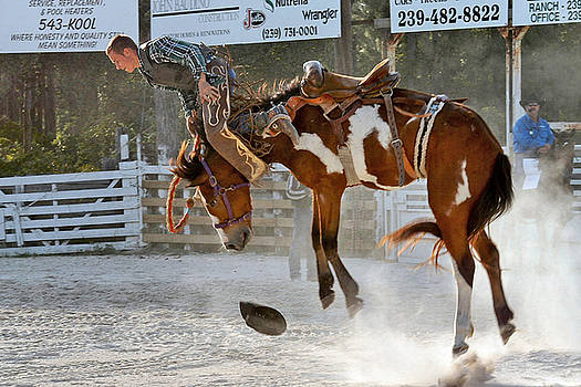 Bronc Riding  by Keith Lovejoy