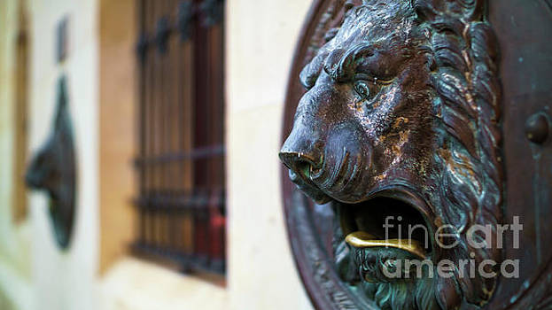 Bronce Lion Mailbox by Pablo Avanzini