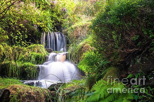 Mariusz Talarek - Bronte Waterfall
