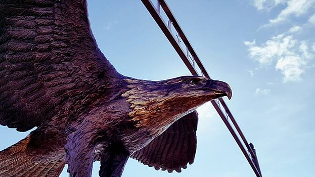 Bronze Eagle by Jason Ross