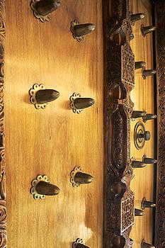 Bronze Studded Door by Lorna Rande
